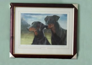 Framed Dobe Prints