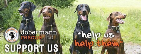 Dobermann Rescue Ltd
